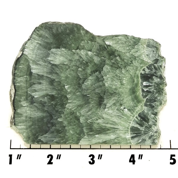 Slab482 - Seraphinite Slab