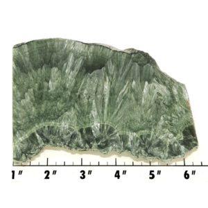 Slab485 - Seraphinite Slab