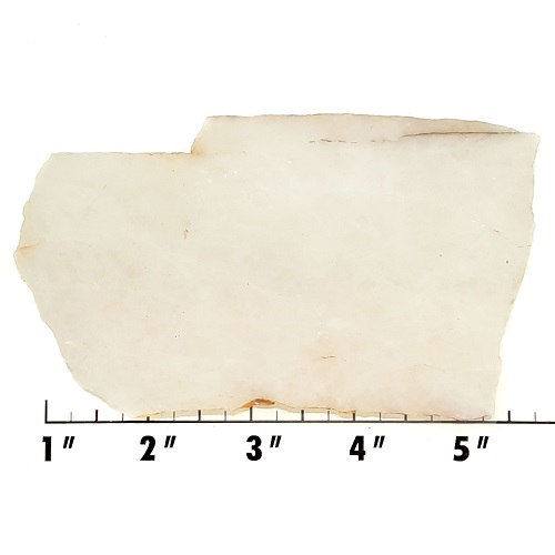Slab584 - White Quartz slab