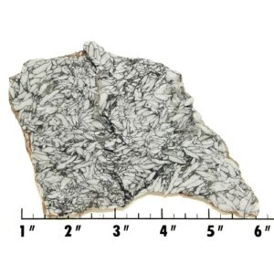 Slab760 - Pinolith Slab
