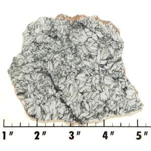 Slab761 - Pinolith Slab