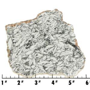 Slab728 - Pinolith Slab