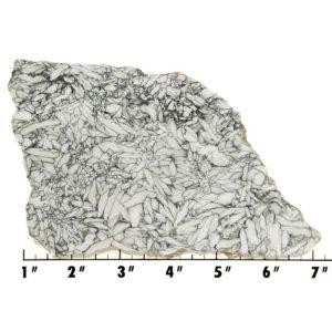 Slab73 - Pinolith Slab