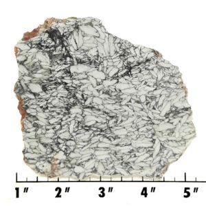 Slab731 - Pinolith Slab