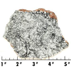 Slab743 - Pinolith Slab