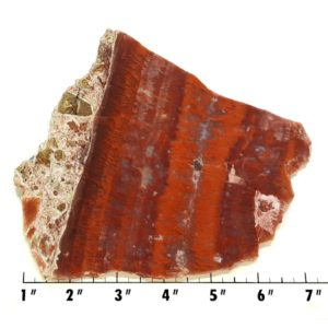 Slab796 - Red Flame Agate Slab