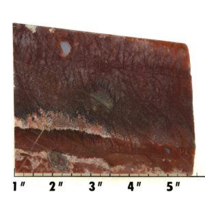 Slab764 - Red Flame Agate Slab