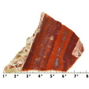 Slab766 - Red Flame Agate Slab