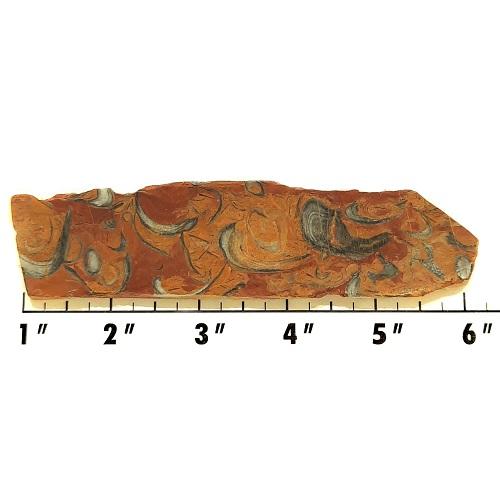 Slab967 - Clam Chowder Stone Slab