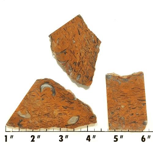 Slab968 - Clam Chowder Stone Slabs
