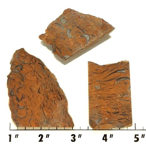 Slab969 - Clam Chowder Stone Slabs
