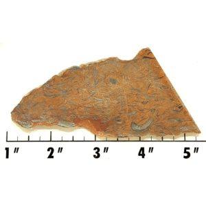 Slab982 - Clam Chowder Stone Slab