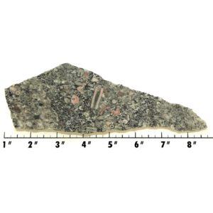 Slab846 - Crinoid Marble Slab