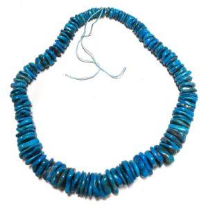 Stabilized Turquoise Irregular Disc Beads #25