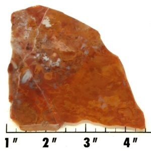 Slab1227 - Vaquilla Agate Slab