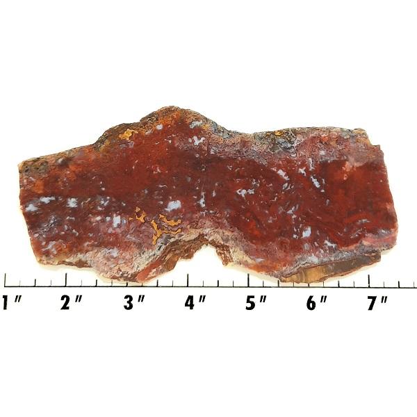 Slab1267 - Vaquilla Agate Slab