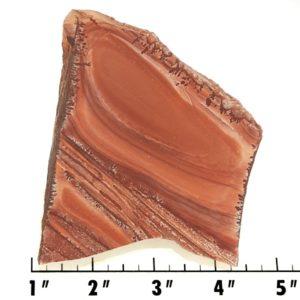 Slab1485 - Apache Sage Rhyolite