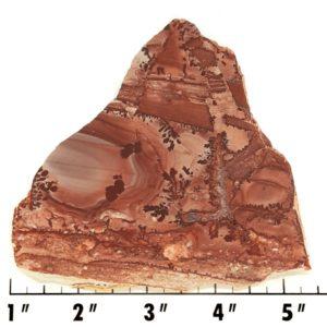 Slab1425 - Apache Sage Rhyolite