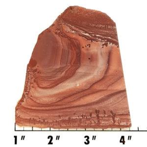 Slab1436 - Apache Sage Rhyolite