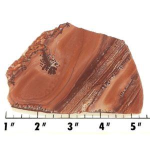 Slab1453 - Apache Sage Rhyolite