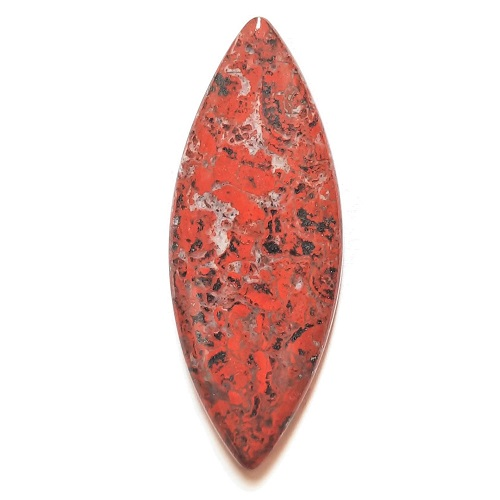 Cab2847 - Red Jasper (Stromatolite) Cabochon