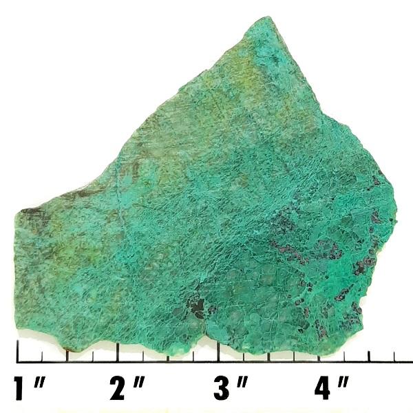 Slab1822 - Malachite in Quartz Slab