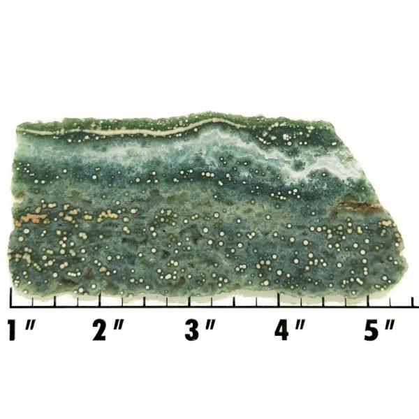 Slab235 - Ocean Jasper Slab