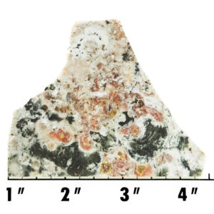 Slab232 - Ocean Jasper Slab
