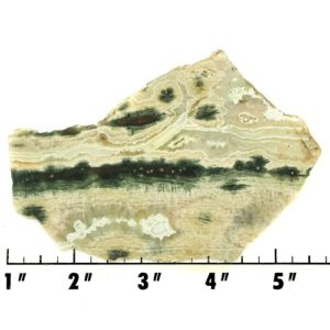 Slab765 - Ocean Jasper Slab
