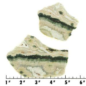 Slab781 - Ocean Jasper Slabs