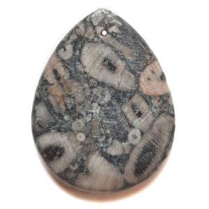 Pendant538 - Fossil Crinoid Marble Pendant
