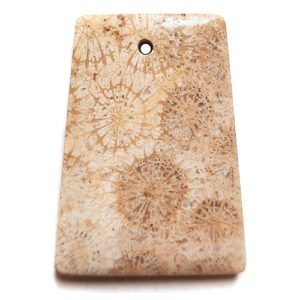 Fossil Coral Drilled Pendant #41