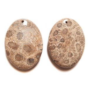 Fossil Coral Drilled Pendants #533