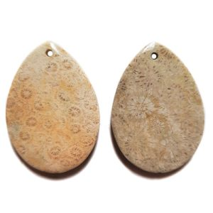 Fossil Coral Drilled Pendants #86