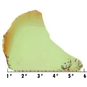 Slab159 - Lemon Chrysoprase Slab