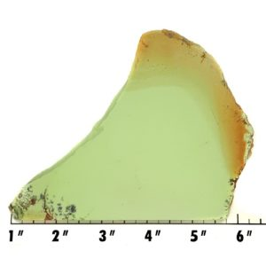 Slab1613 - Lemon Chrysoprase Slab