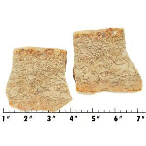 Slab1761 - Crawstone Slabs