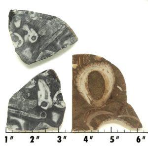 Slab1784 - Crawstone Slabs