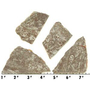 Slab1786 - Crawstone Slabs