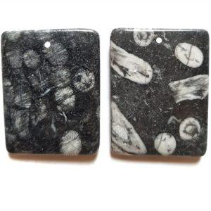 Fossil Stone Jasper Drilled Pendants