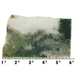 Slab1805 - Green Moss Agate slab