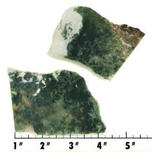 Slab1948 - Green Moss Agate slabs
