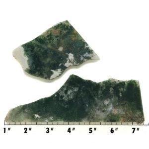 Slab1815 - Green Moss Agate slabs