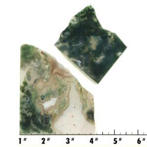 Slab1835 - Green Moss Agate slabs