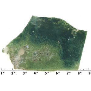 Slab1837 - Green Moss Agate slab