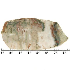 Slab1841 - Green Moss Agate slab