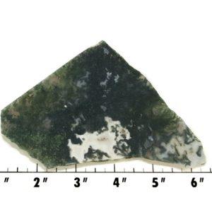 Slab1880 - Green Moss Agate slab