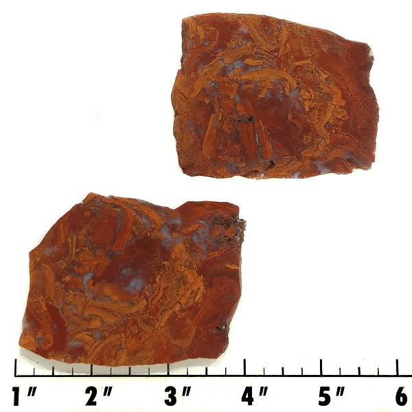 Slab1063 - Rooster Tail Agate Slabs