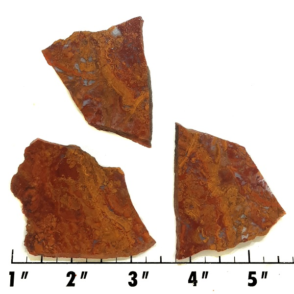 Slab1078 - Rooster Tail Agate slabs