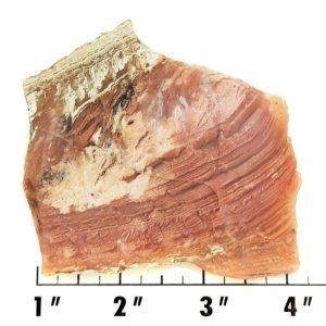 Slab132 - Sagenite Agate Slab